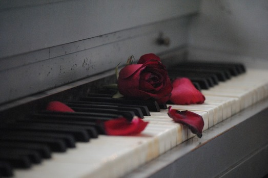 Piano and Rose (free)