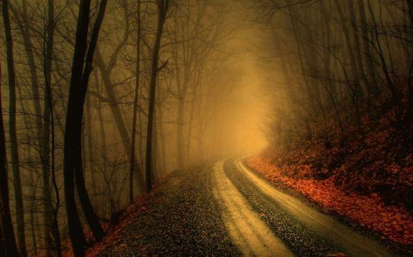 Fall Road I